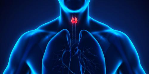 Nodule thyroidien : un signe de cancer ?
