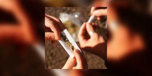 Le cannabis double le risque d'accident de la route