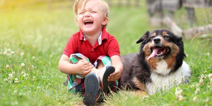 Que faire, mon enfant s'est fait mordre par un chien ?