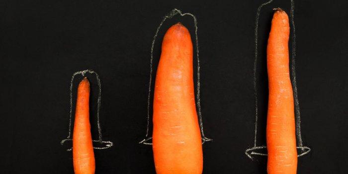 """Résultat de recherche d'images pour """"augmenter taille pénis"""""""